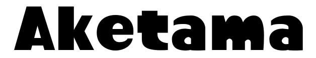 スプラトゥーン風フォントで「AKETAMA」